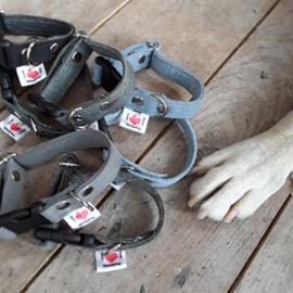 Mini Halsbandje Jeans effen (voor puppies en hele kleine vriendjes)