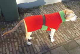 Fleecejas voor je hond (reversible!)