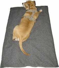 XXXL Hondenkussen Hoes