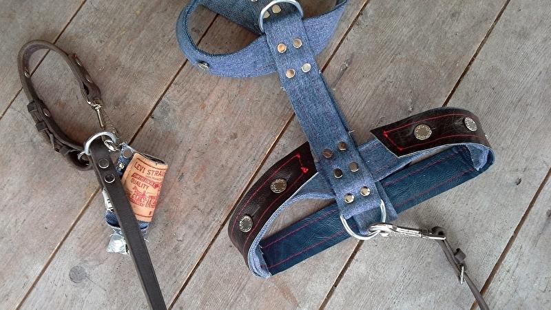 Hondentuig L van Levi Strauss jeans & riem & poobaggy
