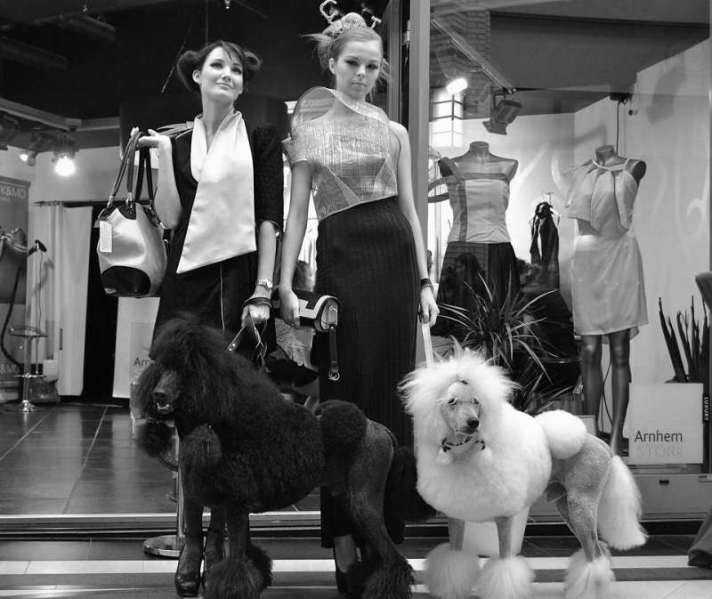 Het gaat goed met ons hondenmodellenbureau!