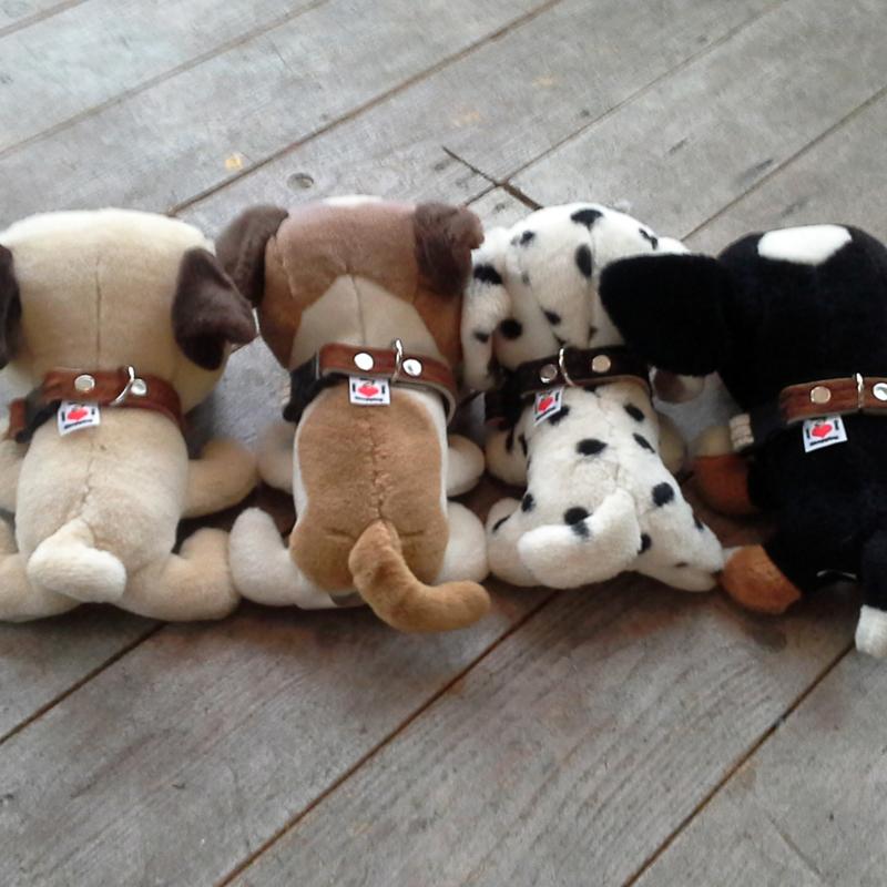 Puppyhalsbandje koe (ook voor hele kleine vriendjes)