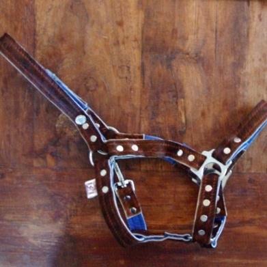 Paardenhalster bruine koe met blauw vilt