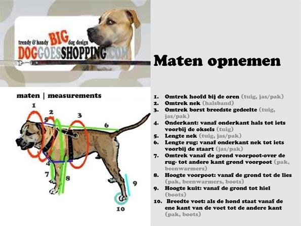 De maten van je hond opnemen