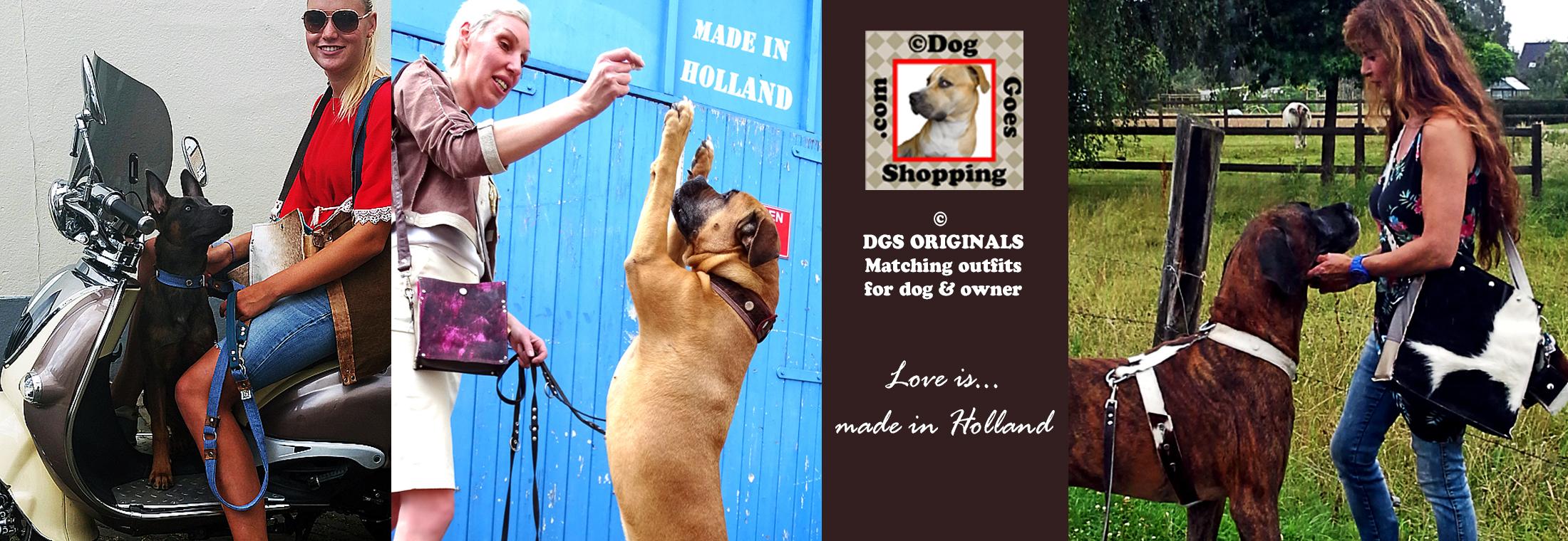 Hondgaatwinkelen2016home