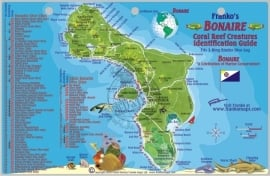 Bonaire - Duiken