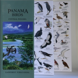 Panama - Vogels in Centraal Panama