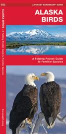 Oiseaux de l'Alaska