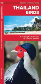 Guide Oiseaux de Thailande