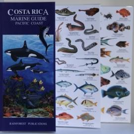 Costa Rica - Zeegids Stille Oceaan