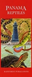Panama - Reptilien