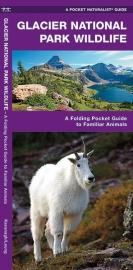 Glacier Nationaal Park - Dieren