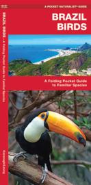 Brazilië vogels