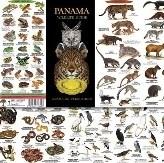 10 Naturführer Panamas
