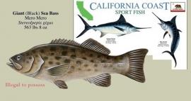 California - Peces de pesca deportiva