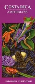 Costa Rica - Kikkers en Amfibieën