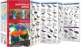 Australie - Vogels