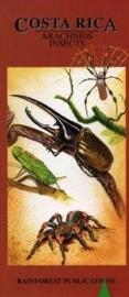 Guide des araignées et insectes du Costa Rica