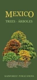 Mexico - Trees