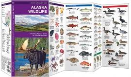 Alaska - Dieren