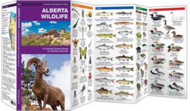 Guide des animaux en Alberta