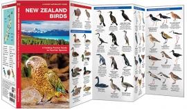 Vögel in Neuseeland