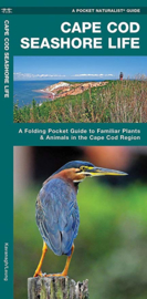 Cape Cod - Planten & Dieren bij Cape Cod