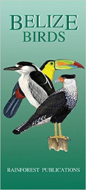 Belize - Birds guide