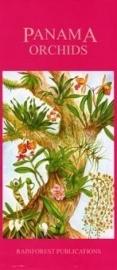 Panama -Orchideen