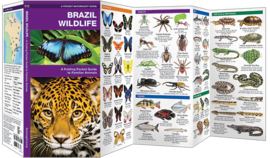 Brasil -  Animales