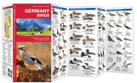 Duitsland - Vogels