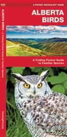 Guide des oiseaux en Alberta