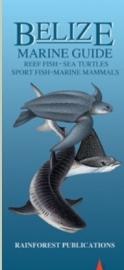 Belize - Zeedieren