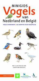 Minigids - Vogels van Nederland en België
