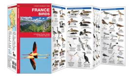 Frankrijk - Vogels