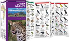Africa - Guía de fauna