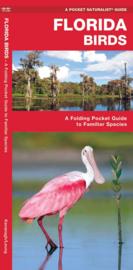 Florida - Vogels