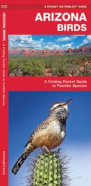 Arizona - Vogels