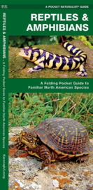 Reptiles and Amphibians of North America