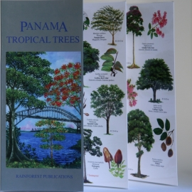 Panama - Bomen