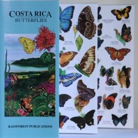 Guide des papillons du Costa Rica
