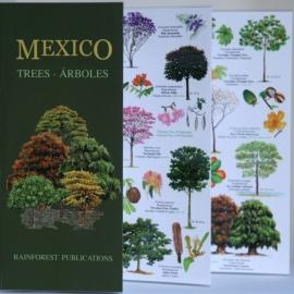 México - Árboles
