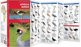Afrika - Vogels
