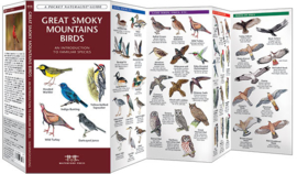 Great Smoky Mountains vogels