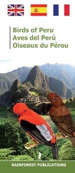Pérou - Oiseaux du Pérou