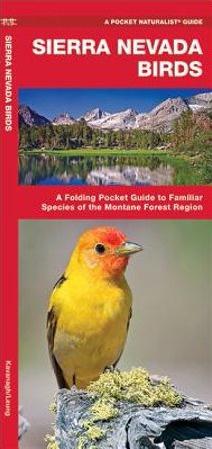 Sierra Nevada - Vogels