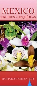 Mexico - Orchideeen