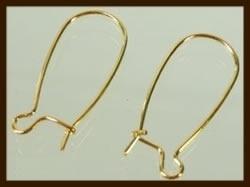 OR07: 10st. Goudkleurige Dichte Oorbellen Haakjes van 15x8mm.