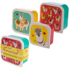 Lunchboxen set | Lama's