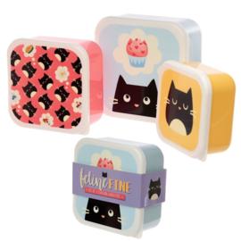 Lunchboxen set | Cats